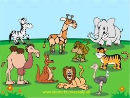 Zvierata A Zivocichy Poznat Rozlisit A Urcit Niektore Lesne A